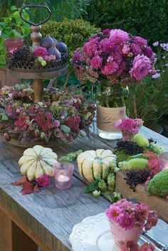 Wonderful Fall Centerpieces!!! Bebe'!!! Perfect for a Tablescape!!!