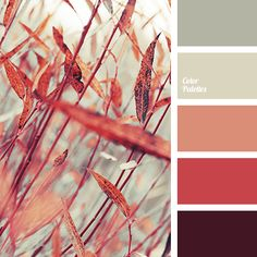 autumn shades, bright red, burgundy, color of wine, color palette for autumn, colors of autumn 2017, coral, dark gray, light gray, orange-red, pink-orange, Red Color Palettes, scarlet, shades of warm gray, wine color.