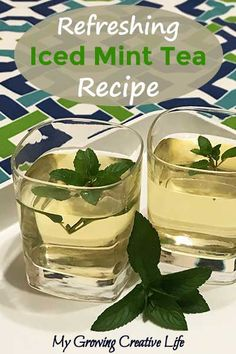 mint drink Whip up some refreshing iced mint tea from fresh mint leaves. It's incredibly easy to make and a great alternative to the traditional iced teas out there!