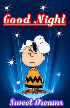 Charlie Brown Quotes, Charlie Brown And Snoopy, Goodnight Snoopy, Snoopy Quotes, Good Night Sweet Dreams, Close My Eyes, Peanuts Snoopy, Cross Stitch Designs, Good Morning