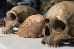 A descoberta de um crânio de 55.000 anos a.C em uma gruta em Israel é a primeira evidência concreta da presença de humanos modernos no Oriente Médio em uma época em que os neandertais também estavam presentes na região.