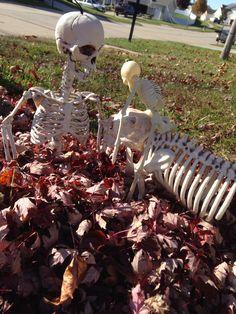 Playing in the leaves. Garden Sculpture, Lion Sculpture, Bones, Leaves, Statue, Outdoor Decor, Art, Art Background, Kunst