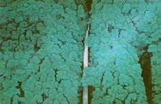 "Kaii Higashiyama - ""Reverberaciones verdes"" 1960 - Serie Encuentros con los paisajes."