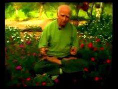 Sugestão de Leitura   Autoperfeição com Hatha Yoga – Professor Hermógenes   yoga em casa   para conhecer e começar a praticar onde estiver