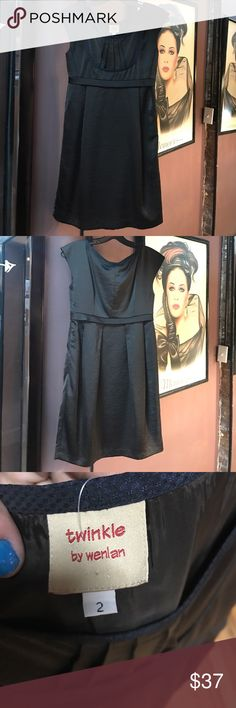 Anthropologie Twinkle by Wenlan shift dress Anthropologie Twinkle by Wenlan dark brown with navy trimming, cap sleeve shift dress with empire waist and POCKETS. satiny and shimmery. No flaws. Fully lined. Super flattering! Anthropologie Dresses