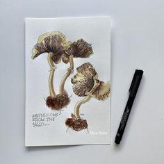 Create Watercolor Mushroom Art with Castell® 9000 Graphite Pencil, Pitt Artist Pen® Extra Superfine and Goldfaber Aqua Watercolor Pencils. Mushroom Drawing, Mushroom Art, Pen And Watercolor, Watercolor Pencils, Pitt Artist Pens, Art Tutorials, Graphite, Stuffed Mushrooms, Aqua