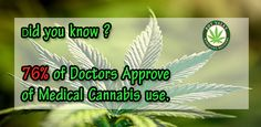 76% of the North American #physicians approved the use of #medical #marijuana to aid their #patients. #cannabis #legalize #mmj #weed