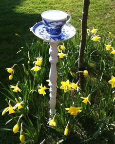 Don't forget to sign up for our DIY bird feeder class with McHugh TEA !! http://ift.tt/1TXTDqg