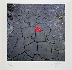 Red leaves, cracked earth. Andy Goldsworthy