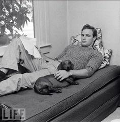 Marlon Brando & dachshund (Source: Life Magazine)