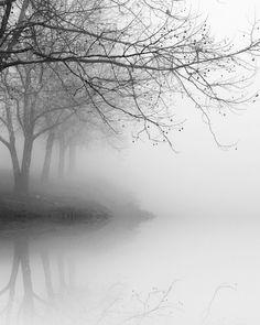 black and white photography,landscape photography, nature photography, trees in fog, tree photography, winter landscape photography by NicholasBellPhoto on Etsy https://www.etsy.com/listing/118337569/black-and-white-photographylandscape
