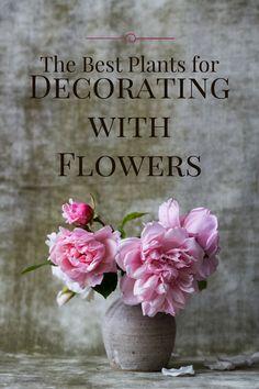 Best Plants for Cut Flowers.png