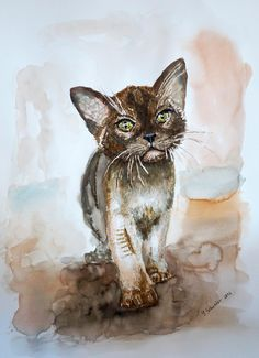 View Chocolate Burmese Kitten by Yulia Shuster. Browse more art for sale at great prices. New art added daily. Buy original art direct from international artists. Shop now
