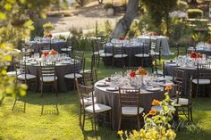 Beautiful dark wood chiavari chairs, gray linens and bright centerpieces in a garden setting.