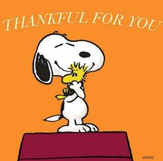 Thankful for you. Snoopy says to Woodstock Peanuts Thanksgiving, Thanksgiving Quotes, Happy Thanksgiving, Thanksgiving Favors, Thanksgiving Recipes, Charlie Brown Cartoon, Charlie Brown And Snoopy, Peanuts Cartoon, Peanuts Snoopy