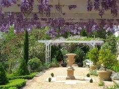 Whimsical wisteria, pergolas - far from the madding crowd. Amazing Gardens, Beautiful Gardens, Madding Crowd, Covered Pergola, Wisteria, Outdoor Living, The Outsiders, Real Estate, Outdoor Structures