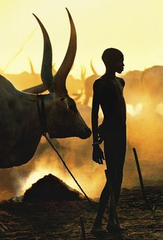 """Dinka: Legendary Cattle Keepers of Sudan"""