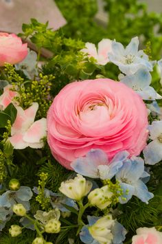 Ranunculus - lovely color combination