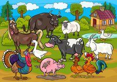 Vocah! | Les animaux domestiques | buffle, mouton, canard, cheval, oie, vache, chèvre, dinde, cochon, poule, coq