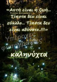 Good Night, Wish, Holiday Decor, Inspiring Sayings, Nighty Night, Good Night Wishes