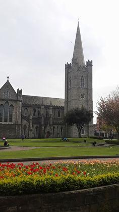 saintpatrickcatedral-flower-dublin-irlanda-garden Cheap Flights, Guinness, Dublin, To Go, Fishing, Mansions, House Styles, World, Places