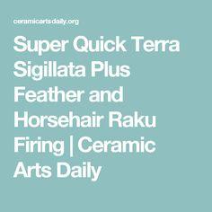 Super Quick Terra Sigillata Plus Feather and Horsehair Raku Firing | Ceramic Arts Daily