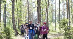 Suomen Metsäyhdistys tekee koulujen kanssa yhteistyötä. Järjestämme metsätapahtumia, kouluille asiantuntijavierailuja, viemme lapsia ja nuoria metsään ja opettajille metsien käyttöön liitty Opi, Education, Couple Photos, Couples, Couple Shots, Couple Photography, Couple, Onderwijs, Learning