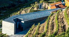Quinta do Vallado - Guided Wine Tour & Wine Tasting in Douro