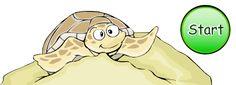 WaterLife: Sea Turtl