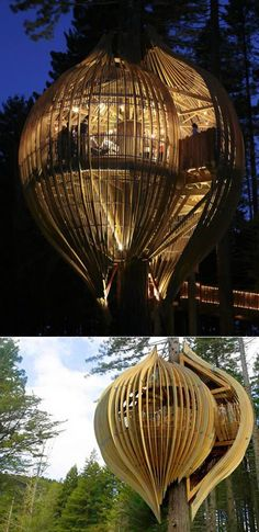 The Yellow Tree House by Pacific Environment Architects is built around a redwood tree, which is over 40m high and has a 1.7m diameter at its base, located north of Auckland, New Zealand.