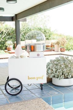 The Bon Puf Cotton Candy cart! Who needs champagne when you can have cotton candy! Brunch Wedding, Wedding Desserts, Wedding Cakes, Cotton Candy Champagne, Champagne Cocktail, Cotton Candy Wedding, Edible Flowers Cake, Mini Milk, Candy Cart