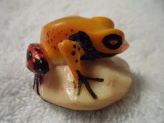 Wounaan Embera Poison Dart Frog Tagua Carving-Panama 16021522L