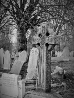 Bare boughs background.    Wandsworth Cemetery, London Borough of Wandsworth