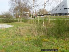 It Fean - De Lauwers → rotonde De Peen ↔ De Klamp