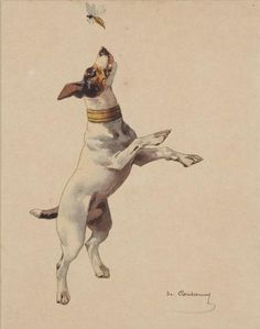 """Jack Russell Catching a Bee"" by Charles Fernand de Condamy, French animal painter, 1855-1913"