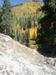There's nothing like a Fall hike in Colorado!