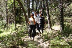 Πεζοπορική βόλτα στην Πάρνηθα 3-5-2015