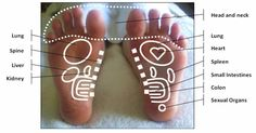 Acupressure Side Effects Before reaching for chemical sleep aids that may cause side effects and create dependencies, try the natural relaxation effects of reflexology! Reflexologists use a . Reflexology Massage, Foot Massage, Massage Envy, Massage Tips, Neck Massage, Massage Chair, Foot Zoning, Foot Chart, Massage Machine