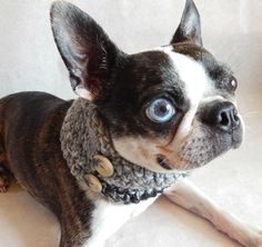 Grey dog Cowl scarf  hand crocheted neck by BlackRavenCreations