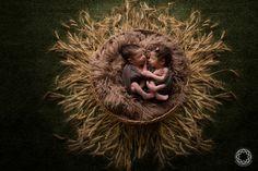 fotografianewborn newborn erechim, recém nascidos, ensaio fotográfico recem nascido