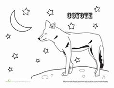 Coyote (Jackal) Coloring Pages For Kids   Preschool And Kindergarten |  Pinterest | Color Posters And Kindergarten