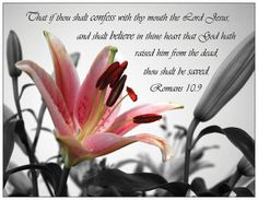 Romans 10:9 with beautiful Lily photo.