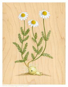 Four New Plant Portraits - Journal - Cuddly Rigor Mortis: The Art of Kristin Tercek