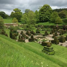 The gardens at Mapperton - a rectangle of clipped formality in a Dorset valley