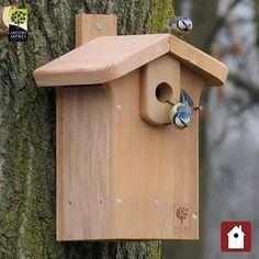 CedarPLUS™ Nestkast Classic (32mm)  Deze nestkast gemaakt van Canadian Cedar is ideaal voor de koolmees, boomklever en bonte vliegenvanger (32mm opening).