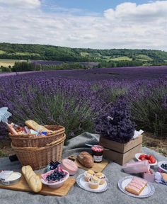 pretty French picnic in a lavender field French Picnic, Picnic Date, Brunch, Lavender Fields, Lavender Garden, Aesthetic Food, Food And Drink, In This Moment, Places