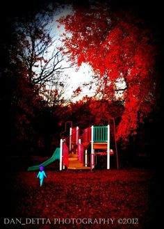 Park, autumn, fall, kids