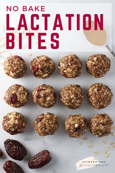 No Bake Lactation Bites -- these energy balls are perfect for anyone (not just breastfeeding moms! So healthy, delicious, and just slightly sweet. They're honestly the best energy balls I've ever had! Perfect for an on the go snack, breakfast, or Healthy Superbowl Snacks, Healthy Protein Snacks, Healthy Nutrition, Lactation Recipes, Lactation Cookies, Lactation Foods, Lactation Smoothie, No Bake Energy Bites, Energy Balls