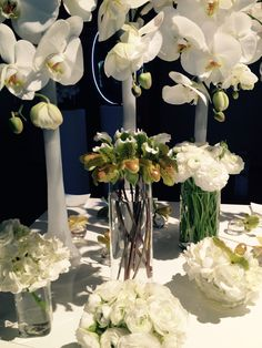 Corporate/white/orchids/renonculus/hydrangeas