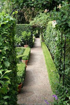 Peaceful garden . . .